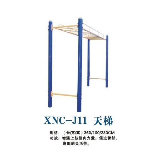 天梯-J11